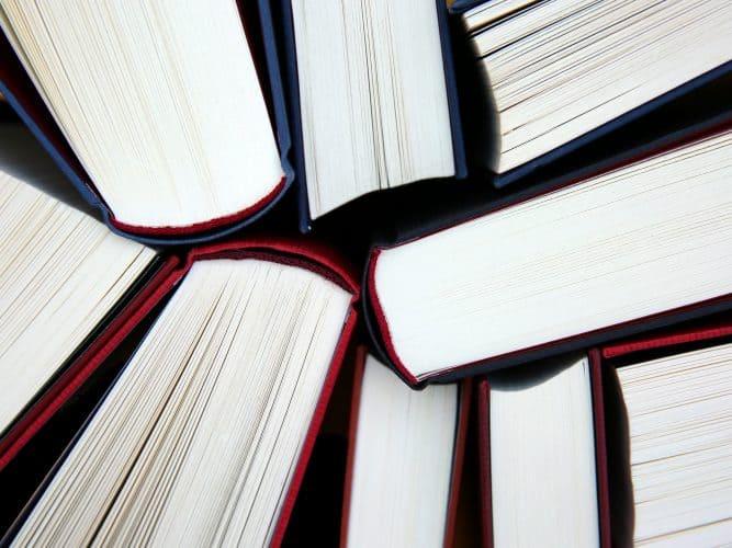 language study scholarships