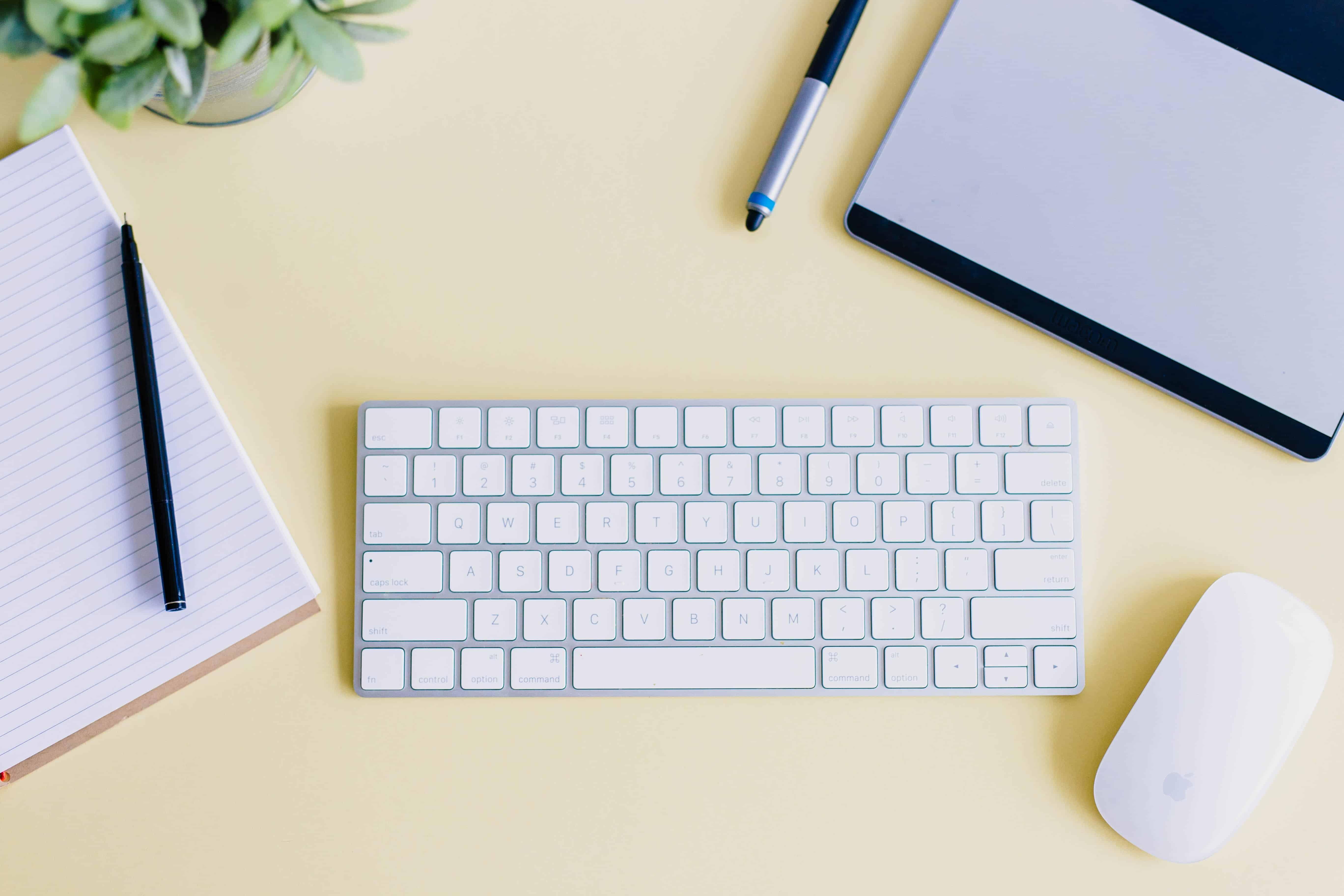 common application essay