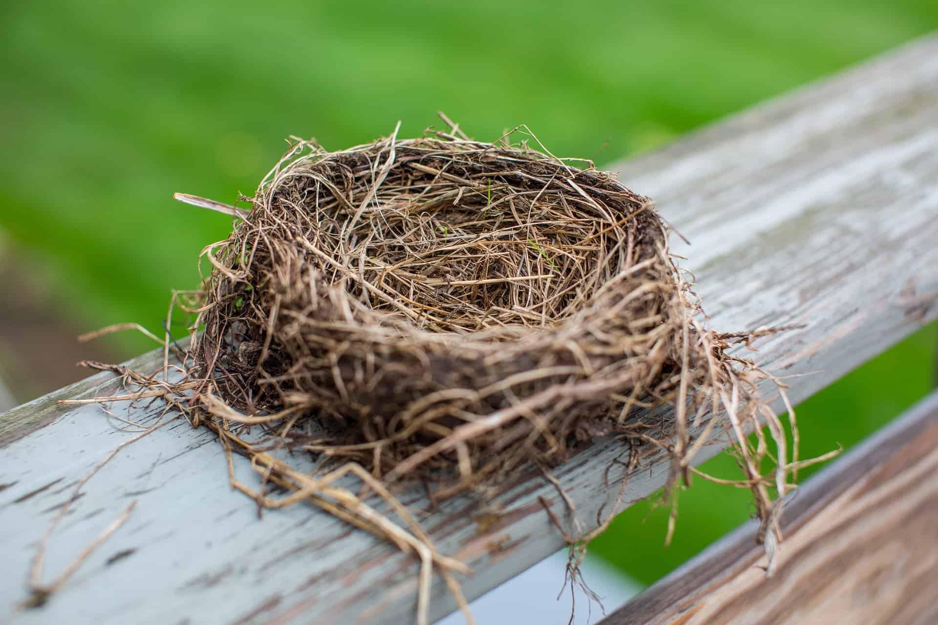 severe empty nest syndrome