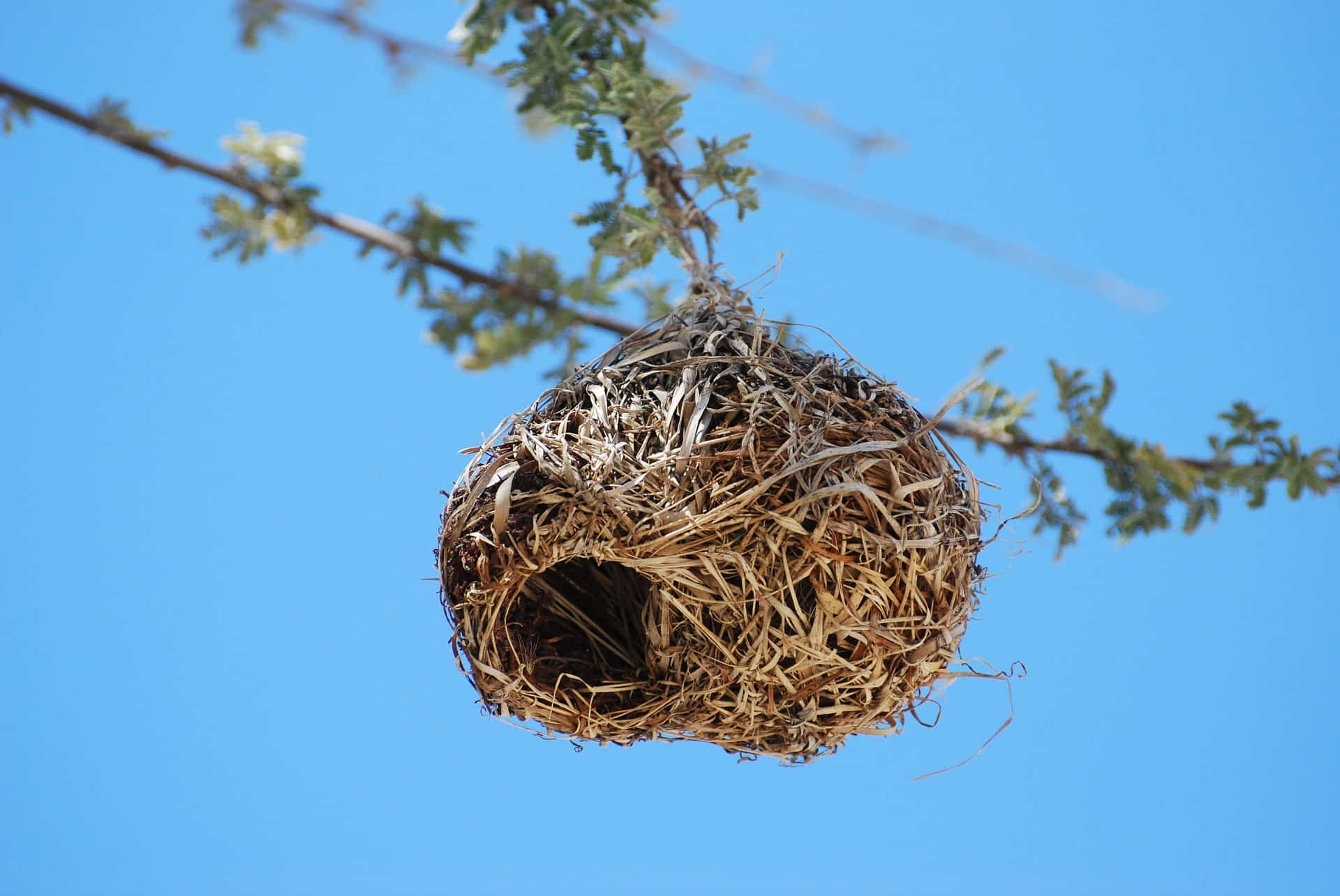 how to cope with empty nest